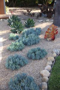 Mesa Adobe Garden 9