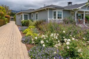 Family Friendly Cottage Garden 19