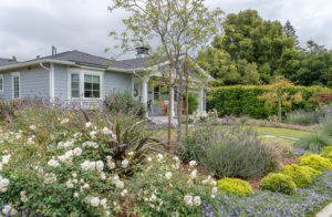 Family Friendly Cottage Garden 39