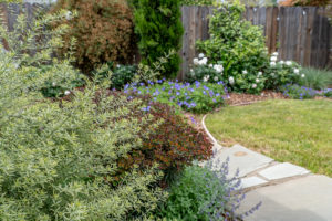 Family Friendly Cottage Garden 7